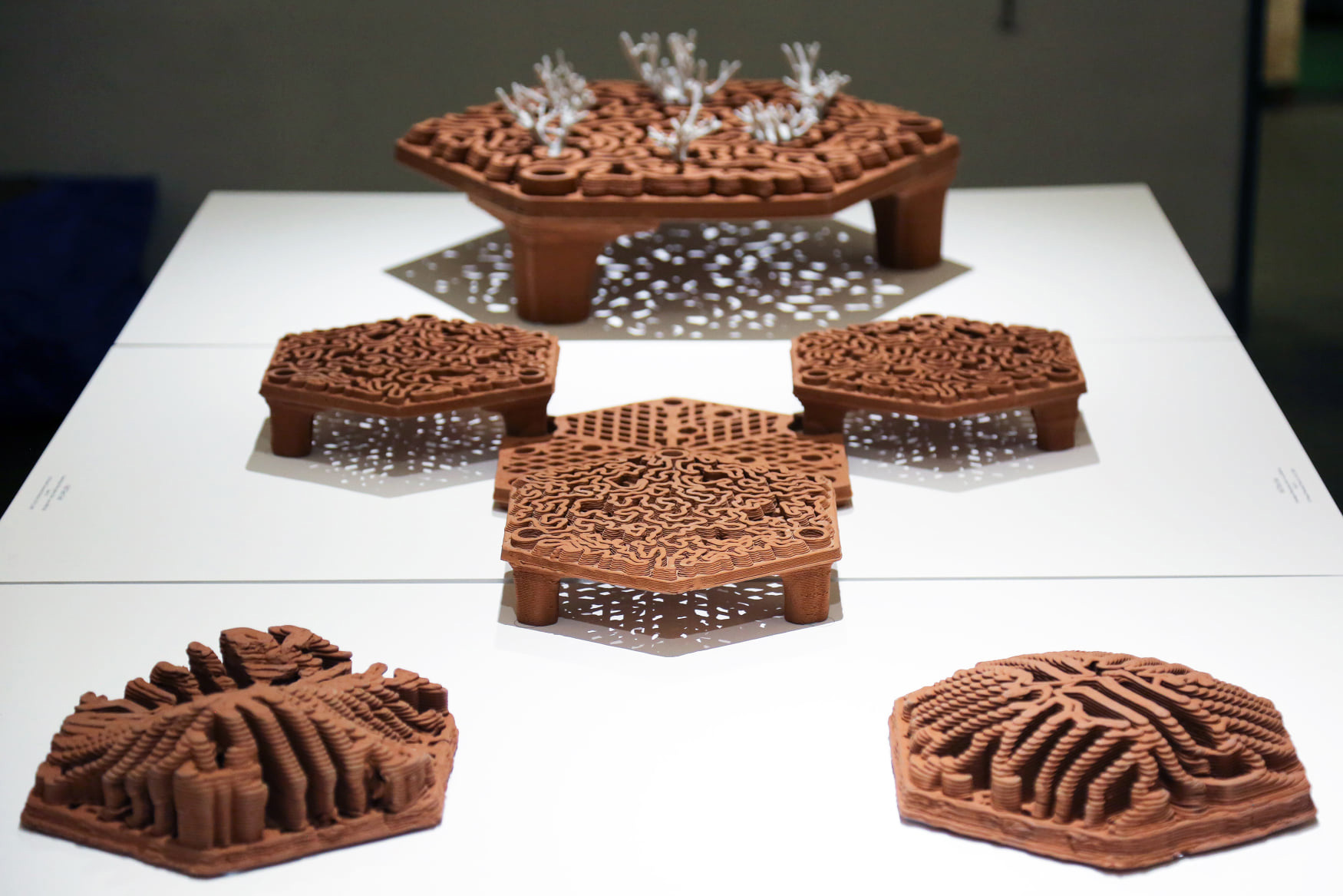 Christian J. Lange, autobryks3D, 3d printing, robotic fabrication, Reef Tiles, coral reef, artificial coral reef, coral restoration, reef restoration Hong Kong, terracotta architecture, 3D printed coral